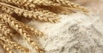 Les différents types de farine de blé et leurs utilisations